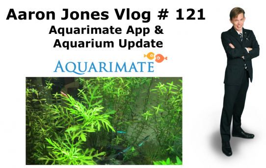 Aquarimate App & Aquarium Update : Aaron Jones Vlog #121